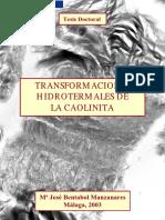 Transformaciones hidrotermales de la Caolinita-Tesis Doctoral.pdf