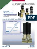 pvq_es.pdf