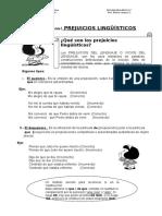 Ficha Vicios Del Lenguaje