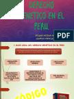 diapo DERECHO GENETICO EN EL PERU.pptx