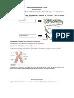 Resumen Biologia Acidos Nucleicos