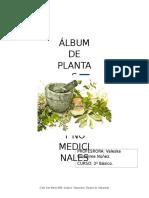 ALBUM DE PLANTA CHILENAS MEDICINALES.docx