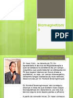 Biomagnetismo PPT