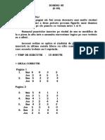 Test Domino - D40 - Instructaj - Etalon