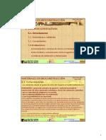 Pamplona1005-5.1.pdf