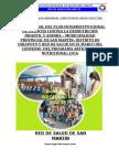 INFORME CONVENIO MUNICIPALIDAD -RED SAN MARTIN 2016 100%.docx