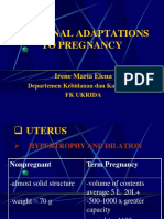 Maternal Adaptations Kul