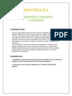 274725851-PRACTICA-N-4-La-quimica-y-nuestro-entorno.docx
