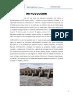 Proyecto Chavimochic Raul