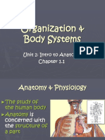 NOTES Organization and Body SystemsKD11