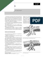 Eventracion.pdf