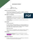 Analisis de Puesto Seguridad (Claudia).