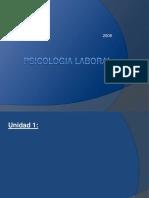 PROGRAMA DE PSICOLOGIA LÑABORAL.pdf