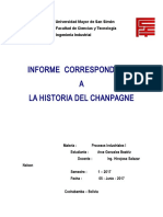 informe CHAMPAGNE.docx