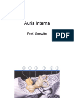 Otitis Auris Interna_04