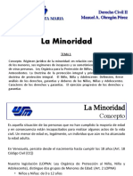 Tema 1 - La Minoridad.pdf