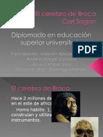 elcerebrodebroca-100101104625-phpapp01
