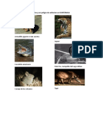 Listado de Animales Extintos y en Peligro de Extincion en GUATEMALA