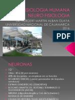 FISIOLOGIA 2. NEUROFISIOLOGIA .pptx