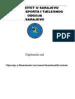 Diplomski Copy