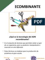 ADN RECOMBINANTE.pptx