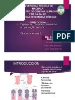 Clase 5_24_08_15 Patologias Maligana DE MAMA.pptx