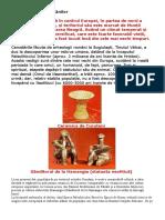 Istoria Oficială a Românilor