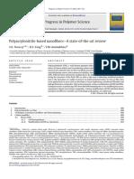 PAN_Review_2012 (1).pdf