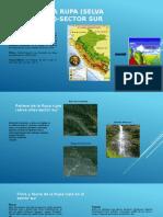 8 Regiones Selva Alta y Baja Rubén