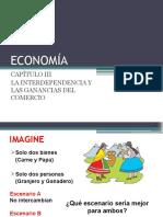 Capítulo III- economia