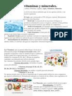 Clasificación de Los Alimentos.