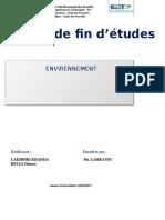 Rapport de stage 2017.docx
