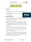 Deshidratacion de Zanahoria Por Cabina Con Aire Caliente (1) (1)