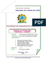 Manual de Lixiviación