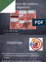Anatomia Digestiva.pptx 1