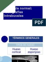 Anatomía Normal Radiografia Intrabucal by Isa