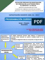 Programacion Curricular 2017