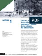 EEDA Spanish Chapter01 130131