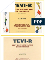 TEVI_(laminas).doc