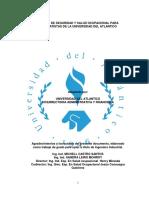 ANEXO 2 MANUAL SISO PARA CONTRATISTAS.pdf