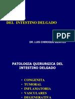 Cx Oncologica Tumores Intestino Delgado Dr Chiroque