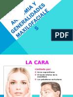 01 - Anatomia y Generalidades Maxilofaciales