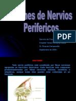 lesionesdenerviosperifericos-100727225449-phpapp02