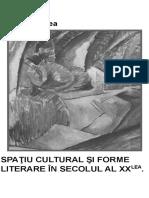 Doinita Milea-Spatiul cultural si forme literare (1).docx