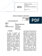 Informe 07 Indice de Mezclado Completo