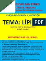 Clase Lipidos 29-5-2017