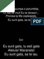 Mireasa Sfanta Porumbita