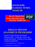 RADYOLOJİK YORUMLAMADA TEMEL ESASLAR[1].ppt