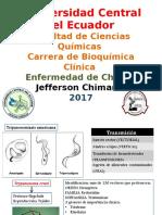 Chagas.pptx