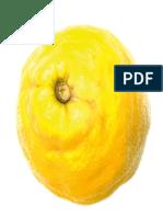 [Pepin Press] the Agile Rabbit Visual Dictionary o(B-ok.org) (Dragged)